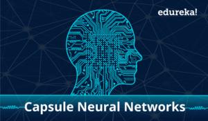 Capsule-Networks-Edureka-300x175.png