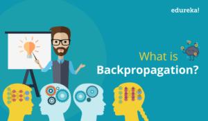 back-propagation2-1-300x175.png