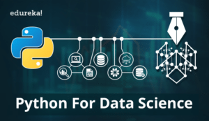 Pyhton-for-data-science-0-300x175.png