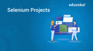 Selenium-Projects-1-300x165.jpg