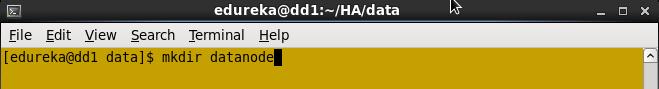Create Datanode directory