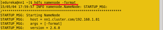 Format Active Name Node