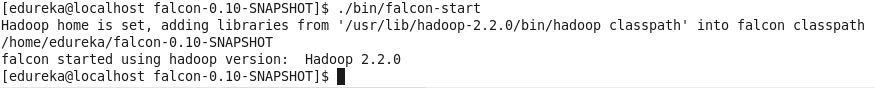 start-Apache-Falcon
