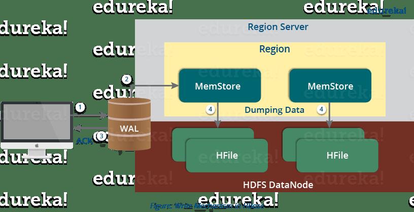 HBase Write Mechanism - HBase Architecture - Edureka