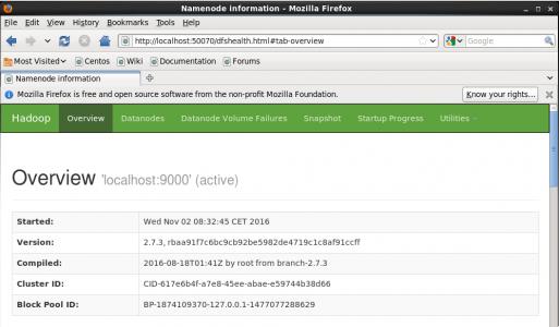 Hadoop NameNode UI - Install Hadoop - Edureka
