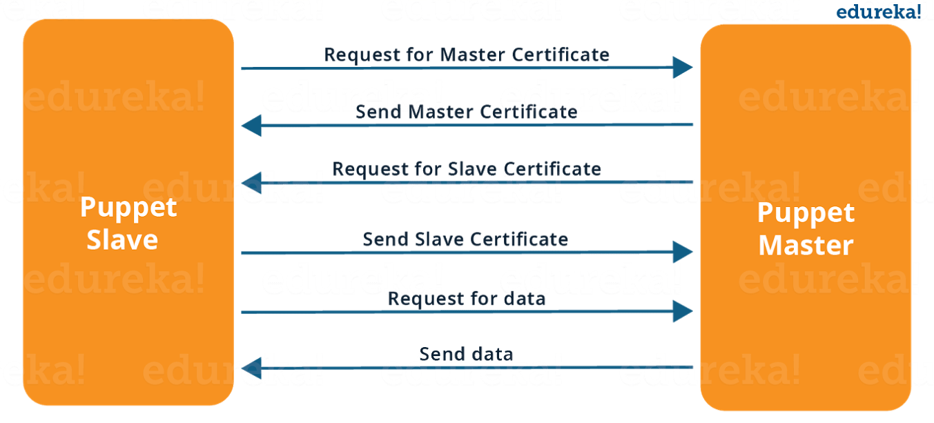 SSL Connection Between Puppet Master and Puppet Slave - What is Puppet - Edureka