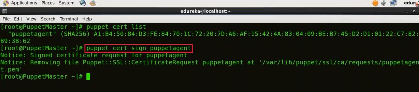 Sign Puppet Agent Certificate - Install Puppet - Edureka