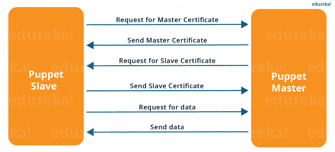 ... Puppet Master Slave Connection   Puppet Interview Questions   Edureka  Interview Questions For Servers