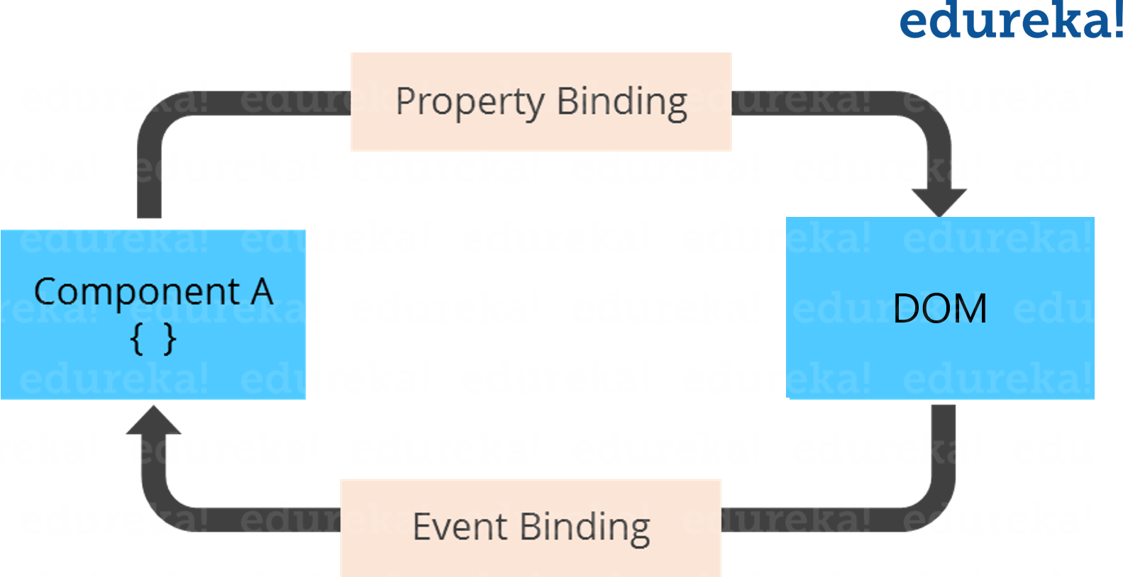 Data Binding - Angular Tutorial - Edureka