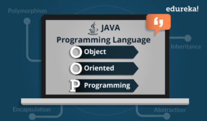 Object Oriented Programming - Java OOPs Concepts W..