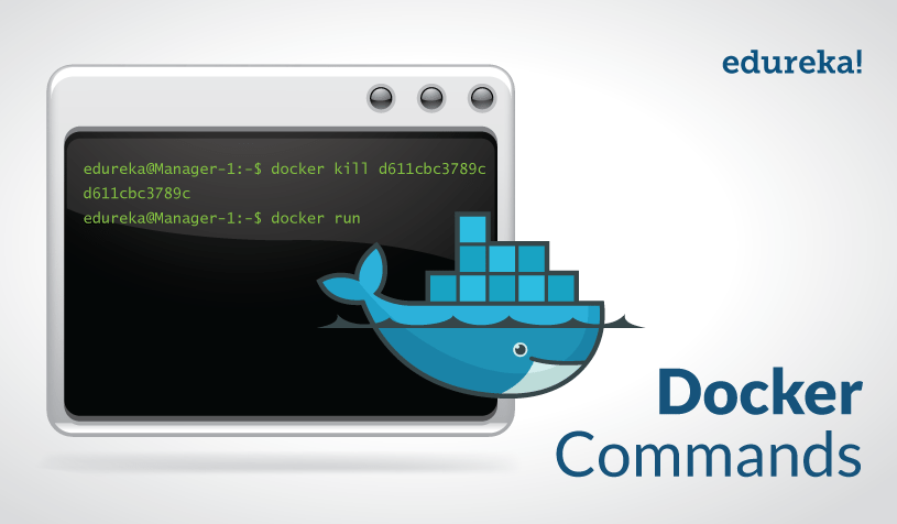 Feature Image - Docker-Commands - Edureka
