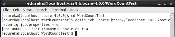 Executing Oozie Job - Oozie Tutorial - Edureka