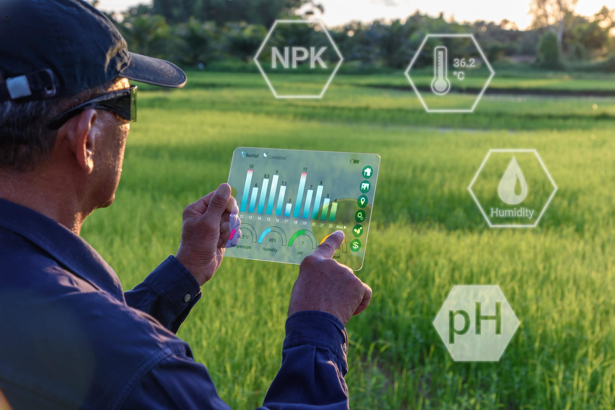 Artificial Intelligence Applications - AI in Agriculture