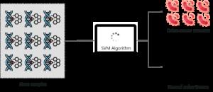 SVM Use case - Support Vector Machine In R - Edureka