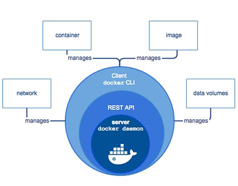 Docker架构:为什么重要?