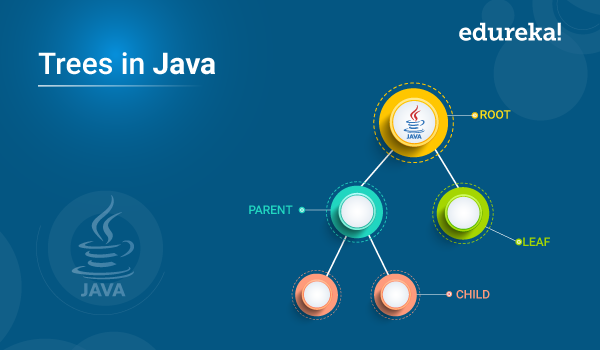 Trees in Java | Java Program to Implement a Binary Tree