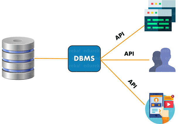 DBMS - What is DBMS - Edureka